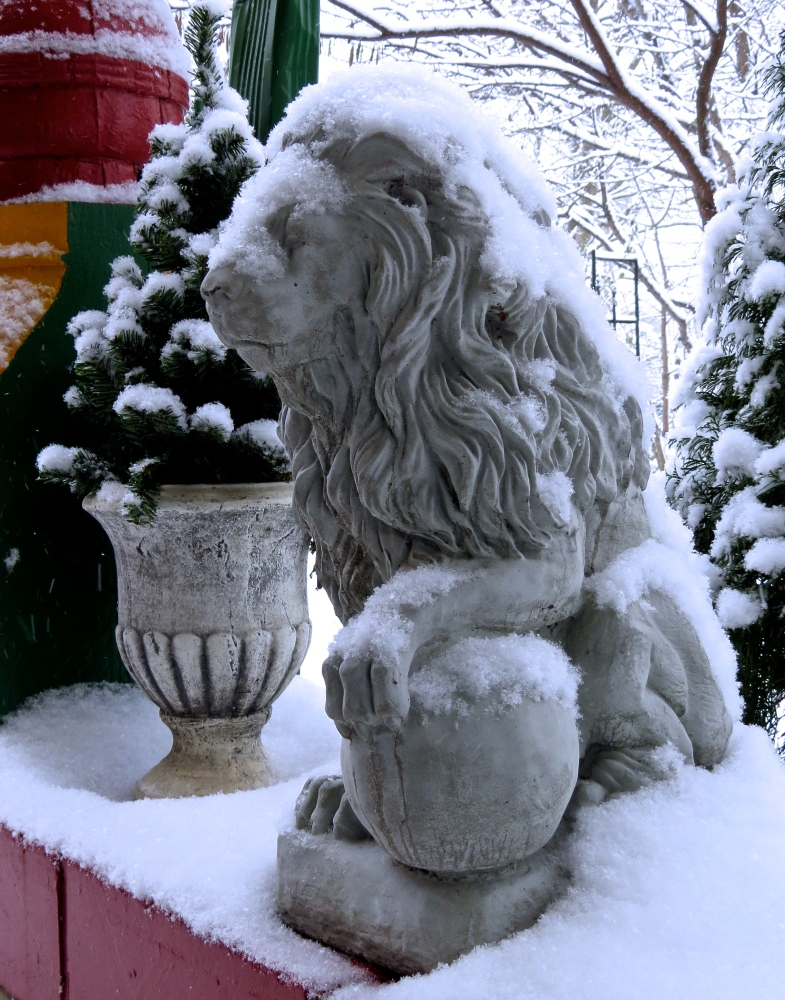 Winter Dreams: A Photo Essay (1/6)