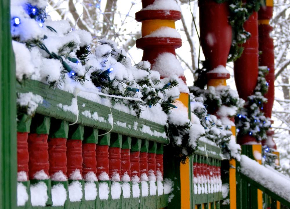 Winter Dreams: A Photo Essay (4/6)
