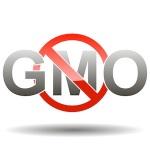 gmo-foods-small
