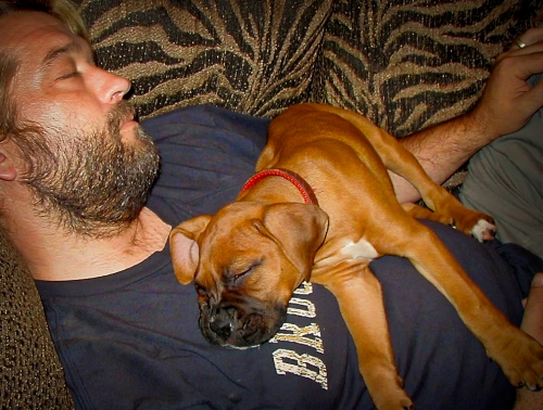 Napping with a much younger Roxie, 2003.