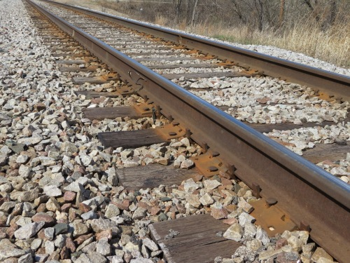 Much of the Fox River Trail follows along functioning and unused train track.