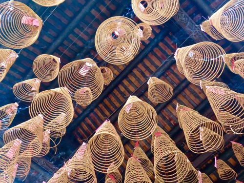 Incense coils hanging from the temple ceiling.