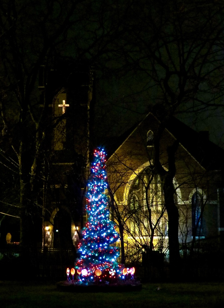 Our tree in the front yard with the church in the background.