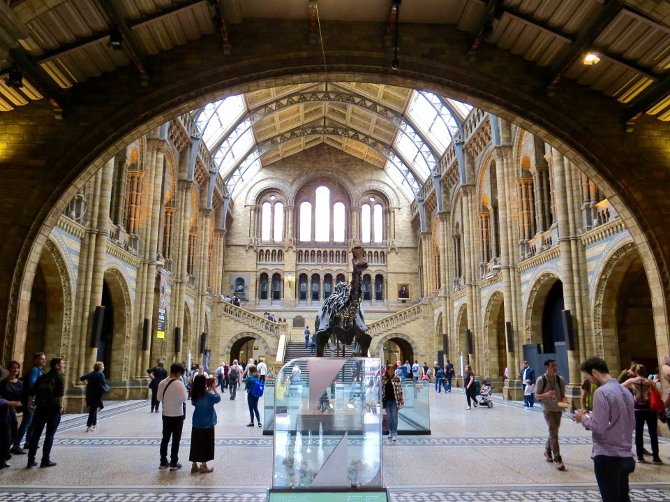 The grand entry of the Natural History Museum.