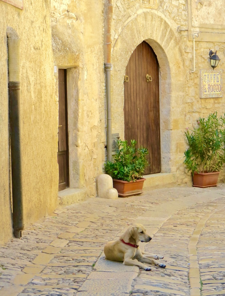 One of several dogs we past, lounging in the streets of Erice.