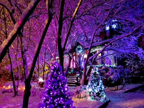 I shot this after the first big snow. Decorations not complete yet. The snow on the trees really caught the area lights.