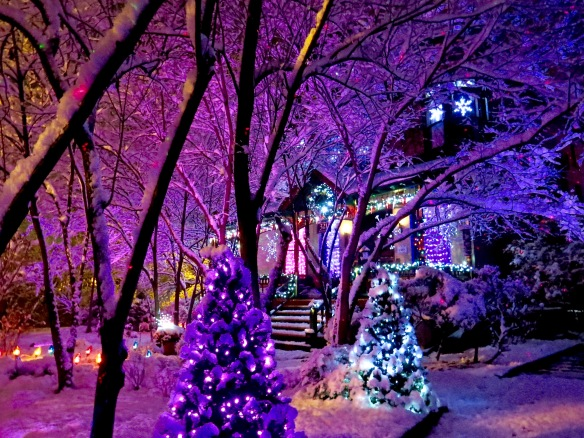 Newman Christmas Trees.John Newman House How Do You Measure 525600 Minutes